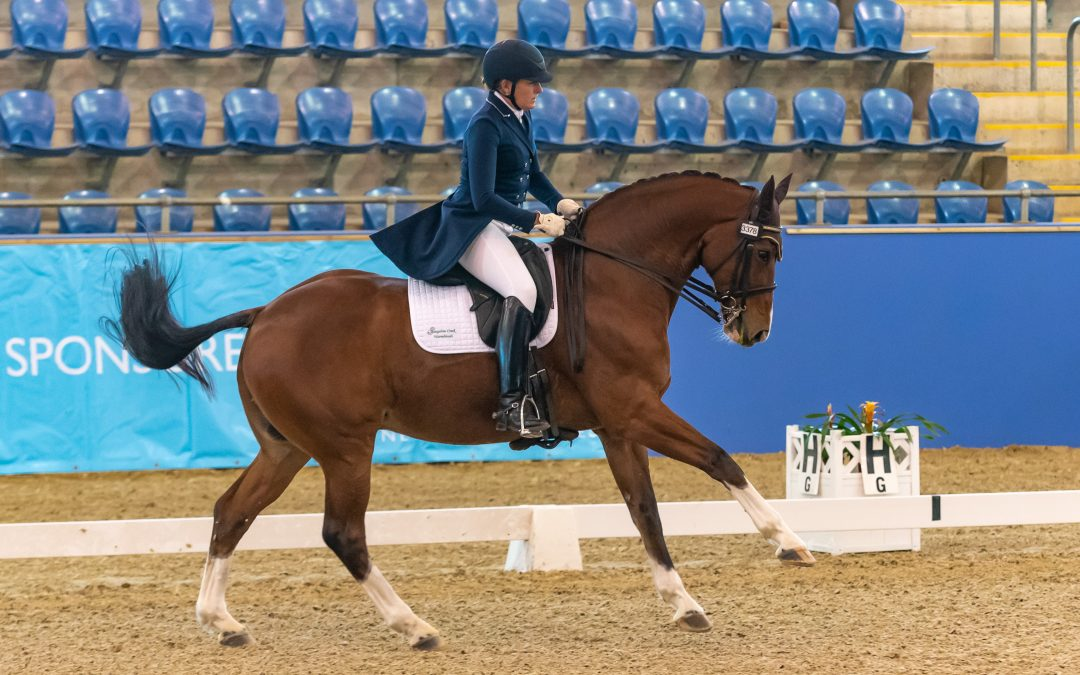 Showcase of Riders at the 2019 Australian Dressage Championships